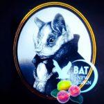 Bat 2020 by Zoologist